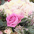 rock-and-rose-et-son-ourson-2641.jpg