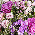 sweet-parme-xxl-et-son-vase-5081.jpg