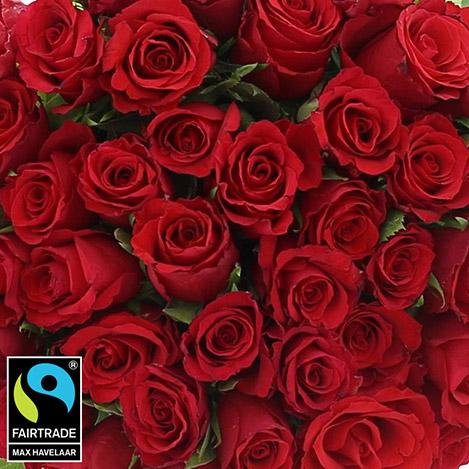40-roses-rouges-et-son-vase-5300.jpg