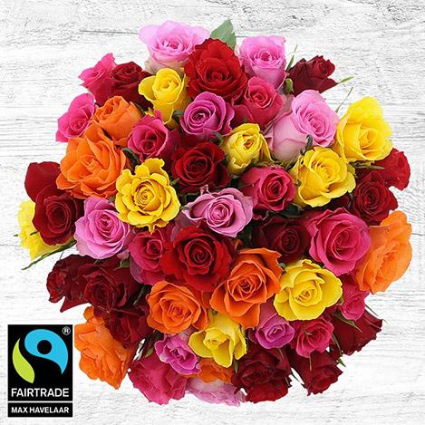 50-roses-multicolores-vase-5336.jpg