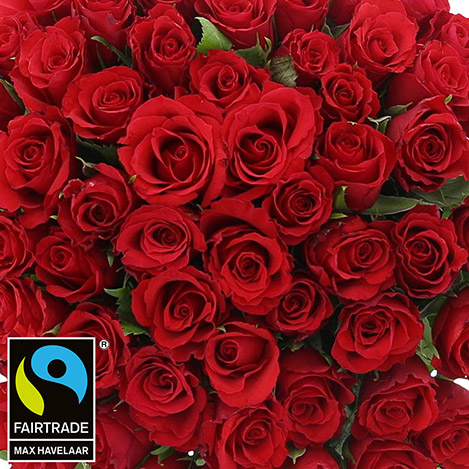 60-roses-rouges-champagne-2994.jpg