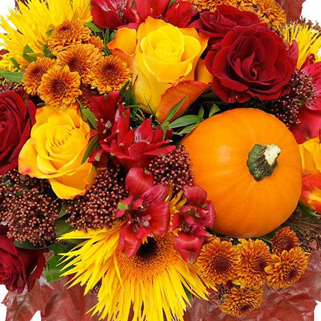 automne-xl-2054.jpg