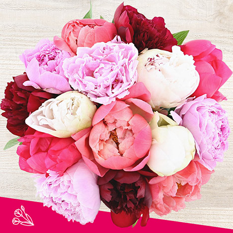 bouquet-de-15-pivoines-et-son-vase-4757.jpg
