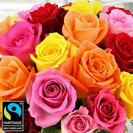 bouquet-de-25-roses-variees-5321.jpg
