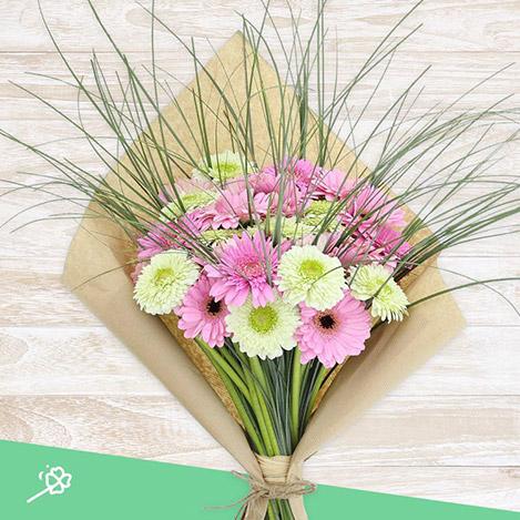 bouquet-de-germinis-roses-xl-4338.jpg