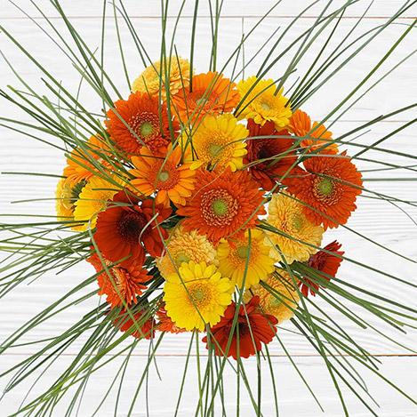 bouquet-de-germinis-tons-chauds-2529.jpg