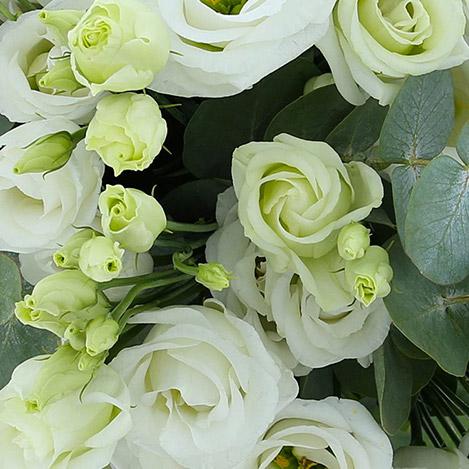 bouquet-de-lisianthus-blancs-et-son--2720.jpg
