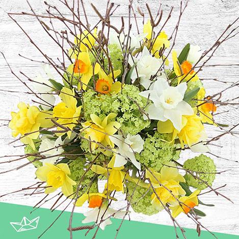 bouquet-de-narcisses-variees-xl-4162.jpg