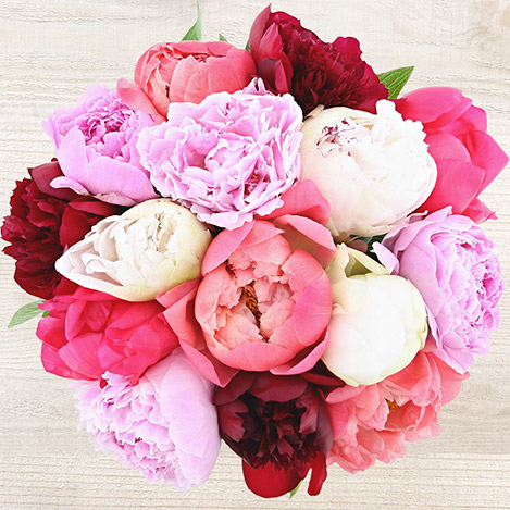 bouquet-de-pivoines-6739.jpg