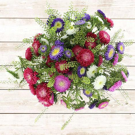 bouquet-de-reine-marguerites-multico-2541.jpg