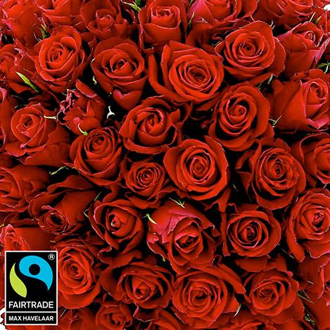 bouquet-de-roses-rouges-sur-mesure-5304.jpg