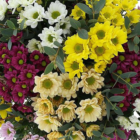 bouquet-de-santini-multicolores-et-s-2744.jpg