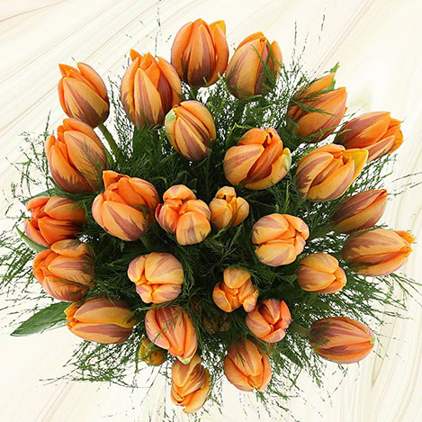 bouquet-de-tulipes-princesse-irene-3468.jpg