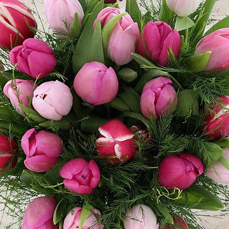 bouquet-de-tulipes-roses-camaieu-3449.jpg