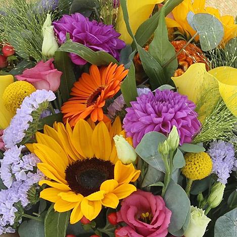 color-pop-xxl-et-son-vase-2766.jpg