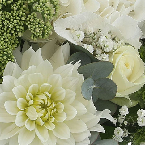 fresh-poesie-et-son-vase-2756.jpg