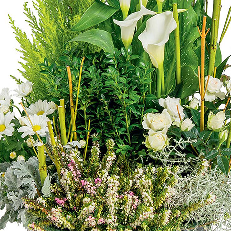 jardin-de-maia-1593.jpg