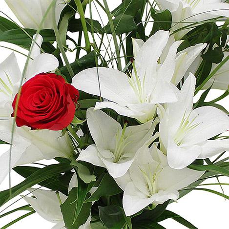 lys-blanc-roses-rouges-1794.jpg