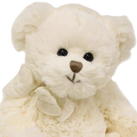 mon-premier-ours-1267.jpg