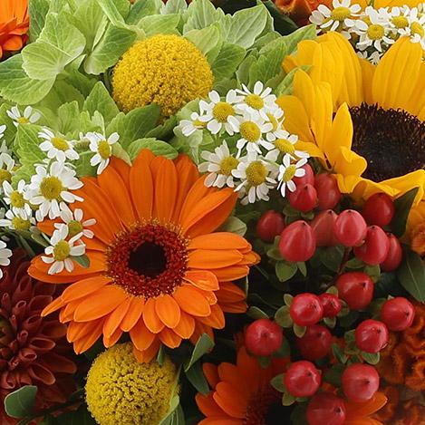 sunny-funky-et-son-vase-2774.jpg