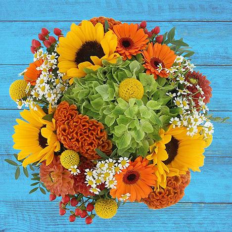 sunny-funky-et-son-vase-2775.jpg