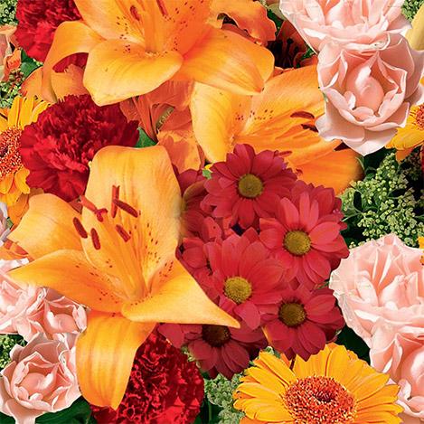 supreme-orange-1611.jpg