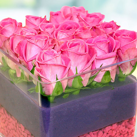 the-cube-rose-4109.jpg