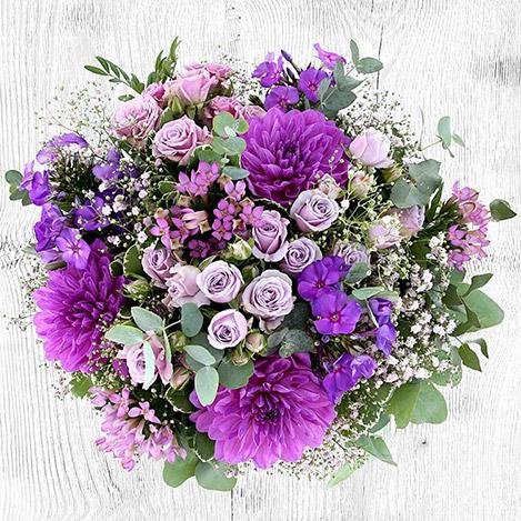 ultra-violet-6796.jpg