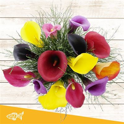 Bouquet de callas multicolores