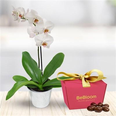 Orchidée et ses amandes caramélisées