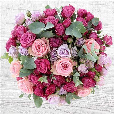 Rose Symphonie