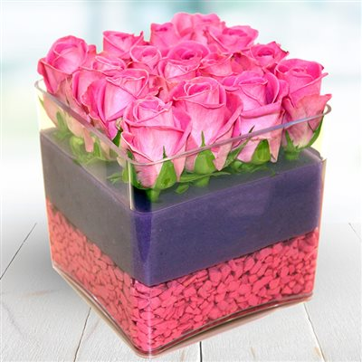 The Cube rose