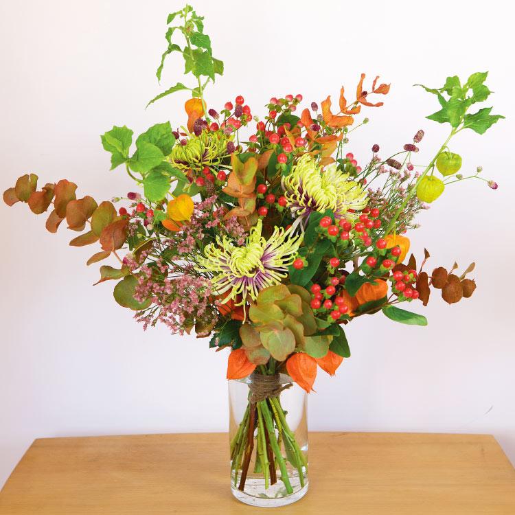 01-automne-saison-750-7016.jpg