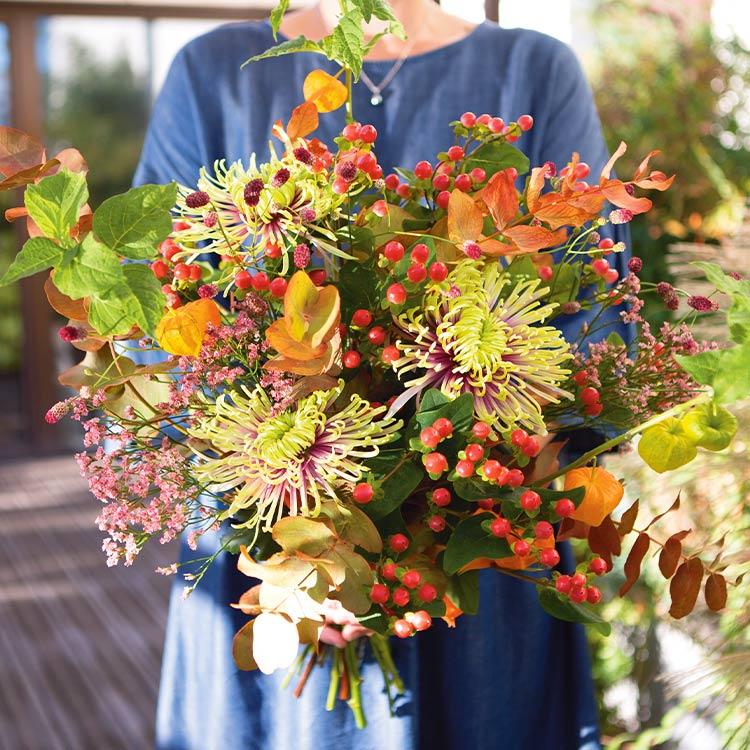 01-automne-saison-750-7017.jpg