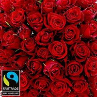 101-roses-rouges-200-3850.jpg