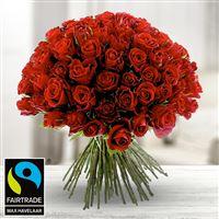 101-roses-rouges-200-3976.jpg