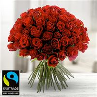 101-roses-rouges-200-3976.jpg