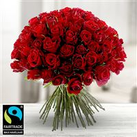 101-roses-rouges-200-5299.jpg