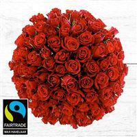 101-roses-rouges-et-son-vase-200-3977.jpg
