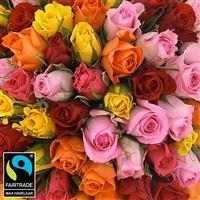 101-roses-variees-200-5332.jpg