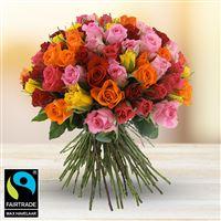 101-roses-variees-200-5333.jpg