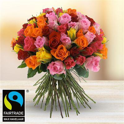 101 roses variées