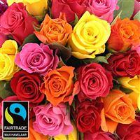 25-roses-chocolat-mere-veilleuse-200-4723.jpg
