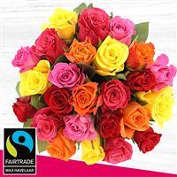 25-roses-chocolat-mere-veilleuse-200-4724.jpg