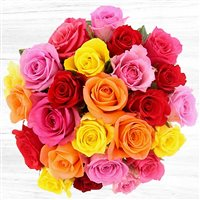 25-roses-variees-et-son-vase-200-4719.jpg