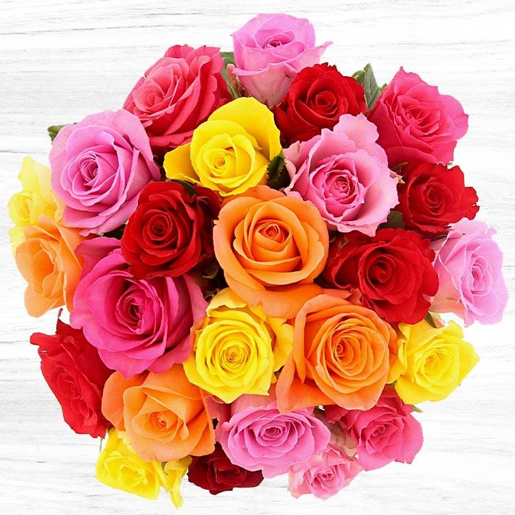 25-roses-variees-et-son-vase-750-4719.jpg