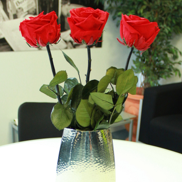 3-roses-eternelles-200-1137.jpg