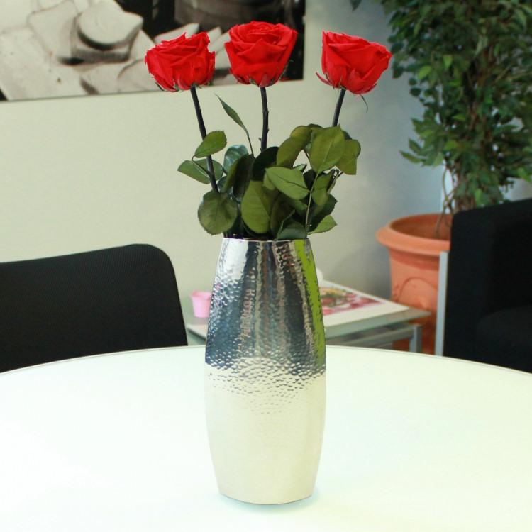 3-roses-eternelles-200-1138.jpg