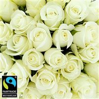40-roses-blanches-200-5309.jpg