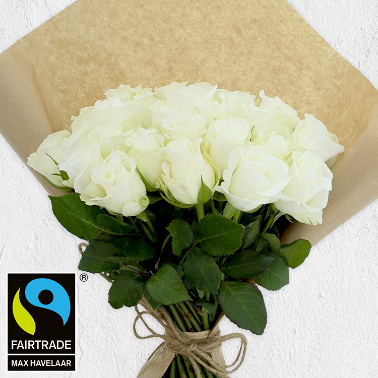 40-roses-blanches-200-2961.jpg